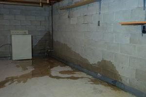 leaky basement